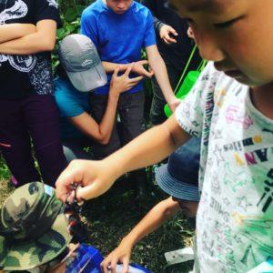 子供 昆虫採集